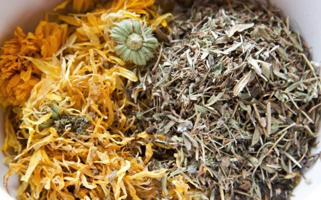 Zpracování bylinek – výroba macerátů, tinktur, sirupů a hydrolátů
